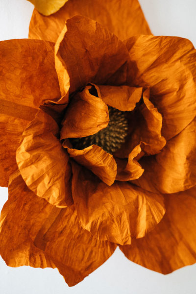 fleur de fond photocall en papier découpé lokta